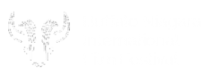 Buffalo Niagara Film Festival